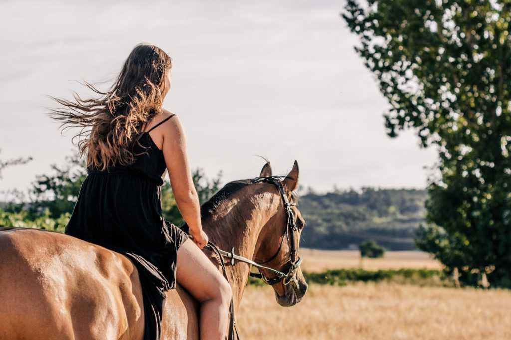 מכללת כרכור   סוסים מרפאים דכאון, רפואה טבעית הוליסטית