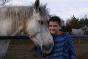 מכללת כרכור | טיפול בילד עם הפרעות קשב וריכוז (ADHD) בעזרת סוסים