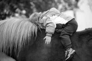 מכללת כרכור | טיפול באמצעות סוסים בתופעות חרדה, הדרך הטבעית