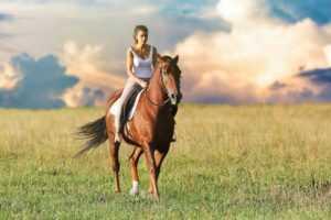 מכללת כרכור | הערכת תוכניות של רכיבת סוסים טיפולית עבור מבוגרים עם מגבלות גופניות