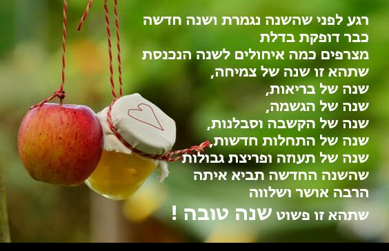 תוצ�ת ת�ונה עבור שנה טובה