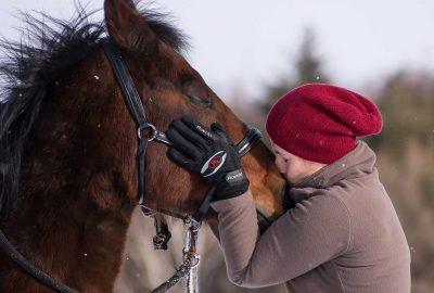 תרפיה בעזרת סוסים, תרפיה עם סוסים, רכיבה טיפולית לימודים, טיפול רגשי ברכיבה על סוסים, קורס רכיבה טיפולית בדרום, קורס רכיבה טיפולית בצפון, עלות קורס רכיבה טיפולית
