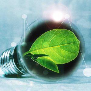 מכללת כרכור | סביבה וקיימות, אנרגיות מתחדשות - פנינו לאן?